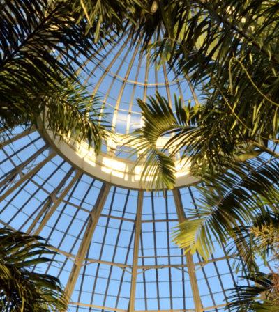 dome at Botanical Gardens in Buffalo NY