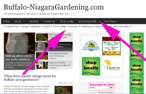 gardening tips Buffalo NY categories