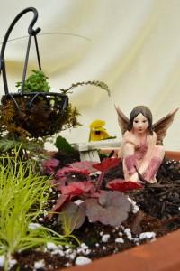 closeup in fairy garden in Buffalo NY