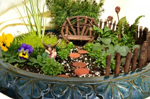 fairy garden overview in buffalo ny area