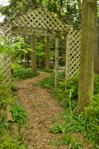 entrance to path through shade garden in Hamburg NY