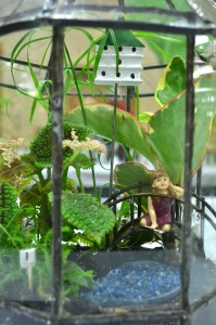 terrarium at national garden club convention in Buffalo NY