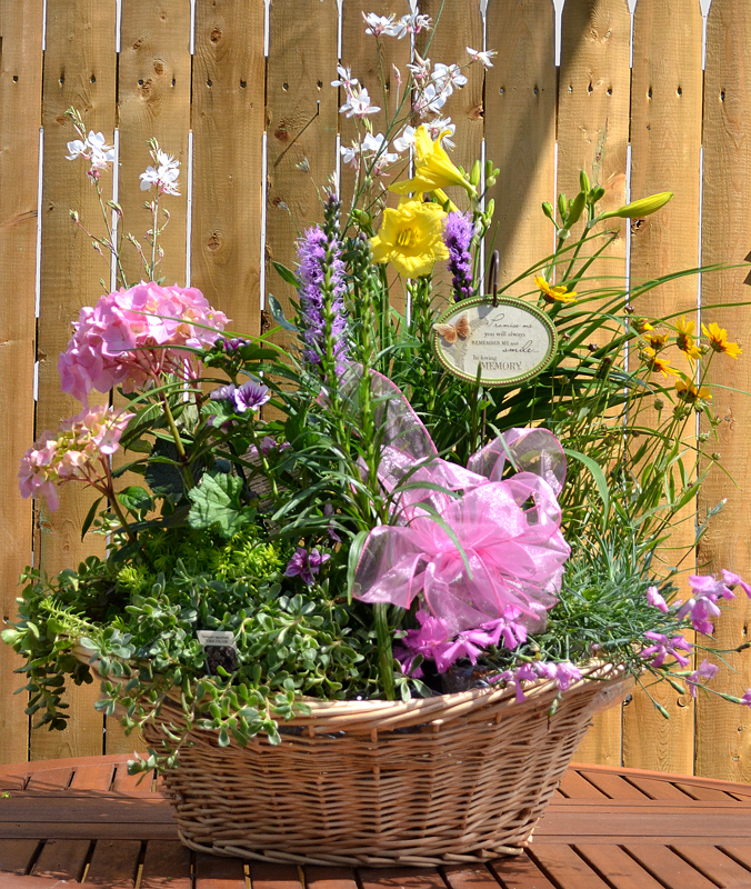Make arrangement of potted perennials plus more news for Garden arrangement