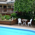 garden by pool in Parkside area of Buffalo NY