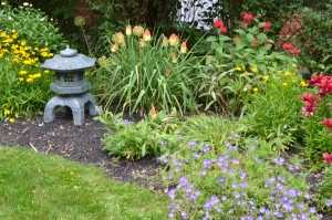 section of perennial border garden in Buffalo NY withstands black walnuts