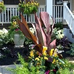 Lockwoods entry in Front Yards Contest in Buffalo NY 2012