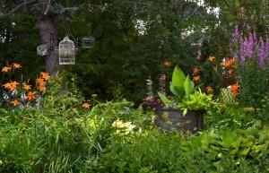 Perennial garden in Amherst NY