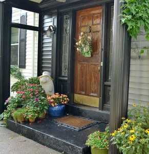 annual flowers at side door in Buffalo NY