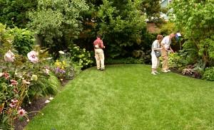 backyard garden on Argyle in Buffalo NY