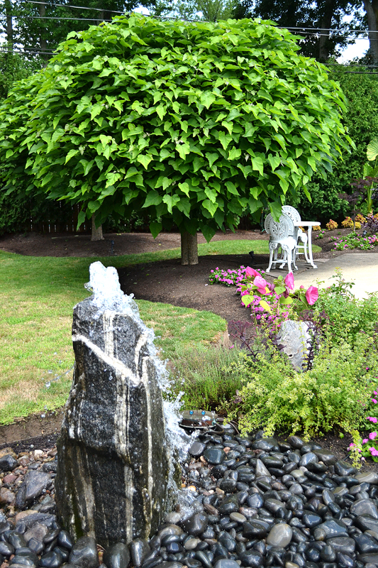 Amherst garden was developed with a tropical theme for Landscaping rocks buffalo ny