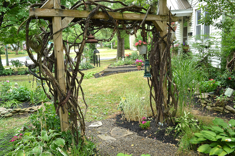 grapevine trellis in Hamburg NY