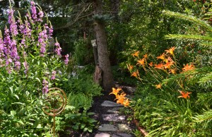 path in perennial garden in Amherst NY