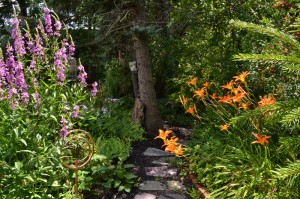 path through perennial garden in Amherst NY