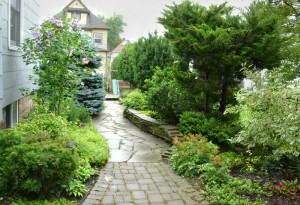 side garden in South Buffalo NY