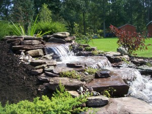 Arbordale landscaping classes in Getzville, NY