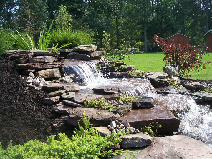 Free landscape design photograph free landscape design cla for Landscape design classes