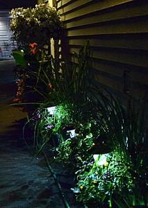 lights along driveway in Tonawanda NY