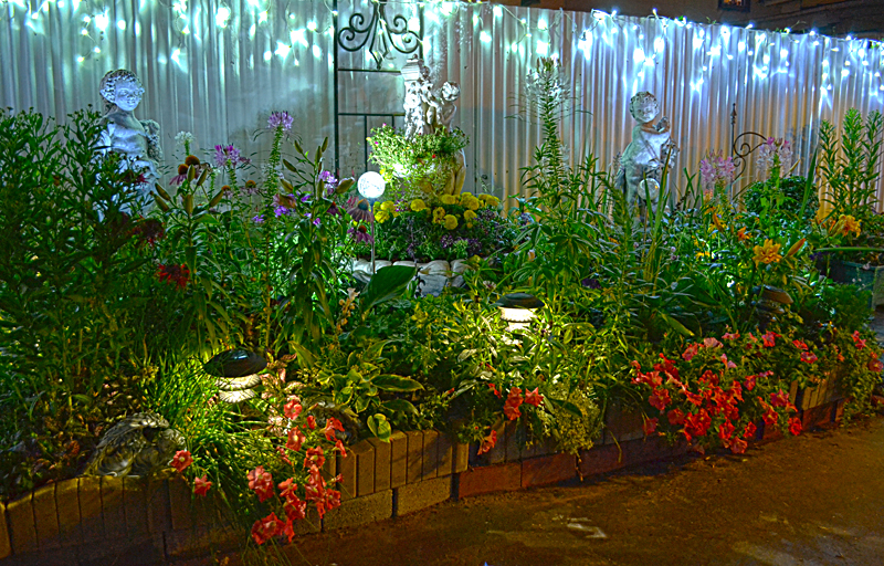 Get a nighttime view of garden that packs many flowers in small space buffalo - Keep mites away backyard hiking ...