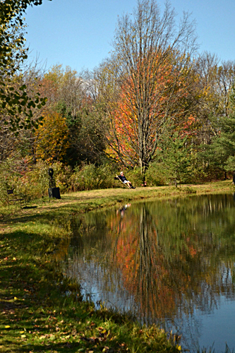 Autumn Reflections 5 in Buffalo NY area