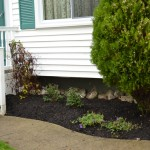 garden Amherst NY after makeover