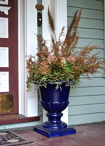 pot of dried flowers on porch in Buffalo NY