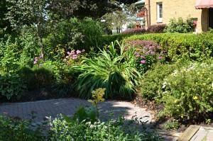 garden walkway on Busti in Buffalo NY