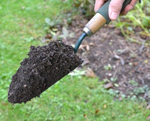 scoop of soil in garden trowel