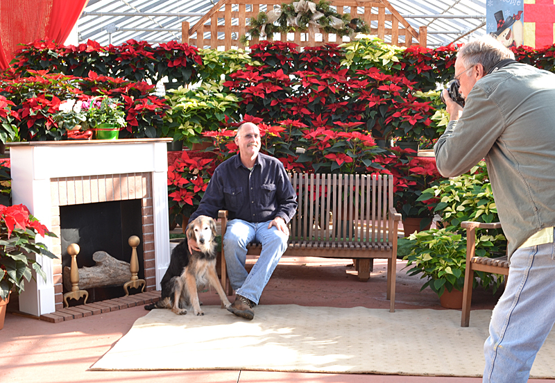 take photo with poinsettia backdrop at Mischler's in Amherst NY