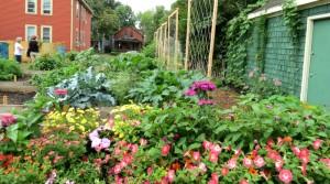 Grassroots Gardens garden 2 in Buffalo NY