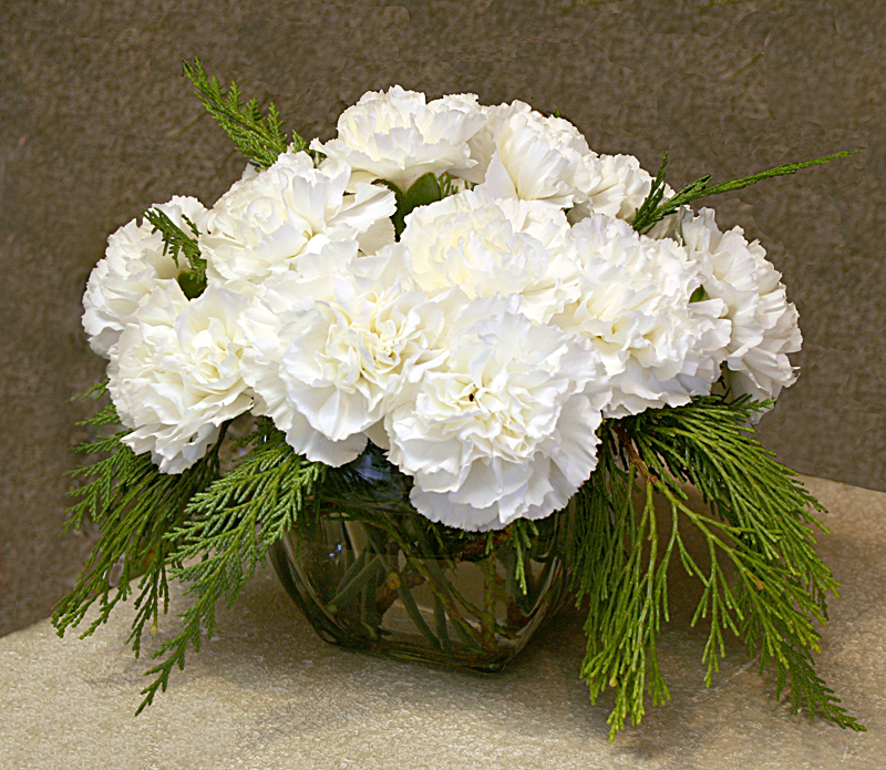 Carnation is the birthday flower for january but it gets no respect carnations in cube from mischlers in amherst ny mightylinksfo
