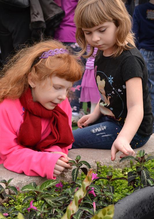 kids in touch garden in Buffalo NY 2