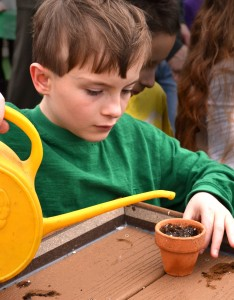 Ryan Sledz, 9, carefully waters a newly planted seed.
