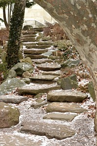 steps in Japanese Garden in Buffalo NY