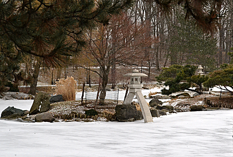 wide view of Japanese Garden in Buffalo NY