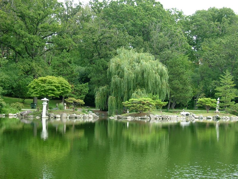 mirror lake Japanese Garden of Buffalo