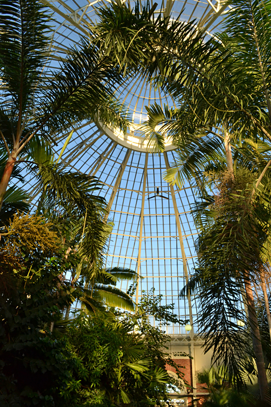 dome at Botanical Gardens in Buffalo NY
