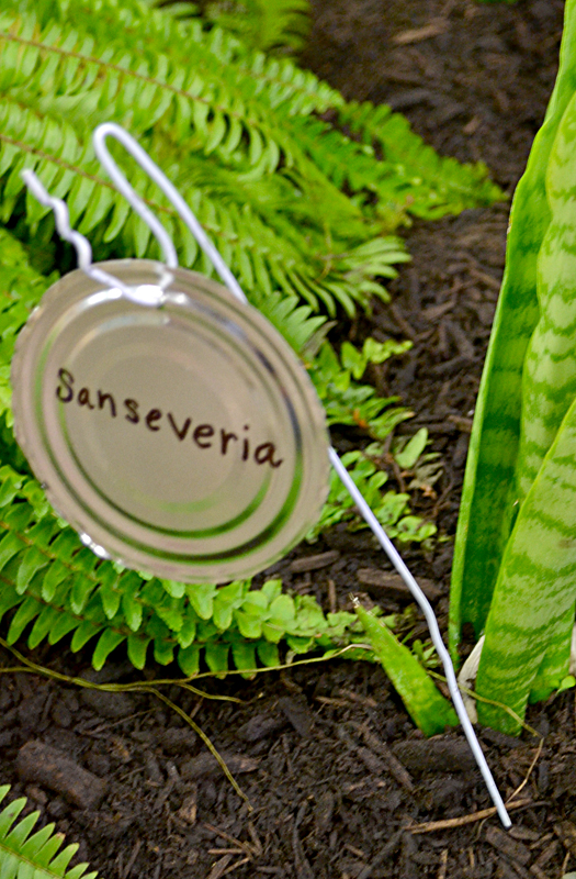 Use Trash To Make Vertical Garden Plant Tags Even