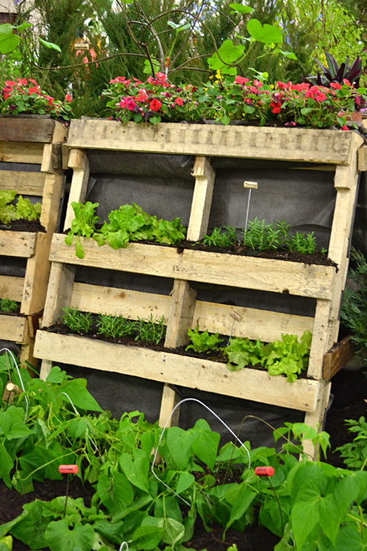 Use trash to make vertical garden plant tags even for Vertical pallet garden