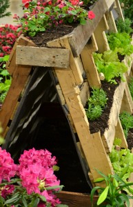 view of pallets as vegetable garden showing brace in Buffalo NY