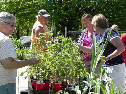 Plant Exchange 2012 at Audubon in Jamestown NY