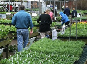 photo of shoppers from Mischler's Florist Greenhouses Williamsville NY