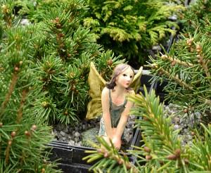 fairy garden workshop in Amherst NY