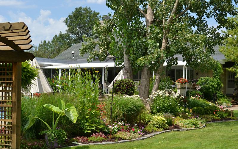 border garden in Amherst NY