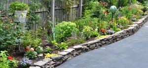 border garden in Snyder NY