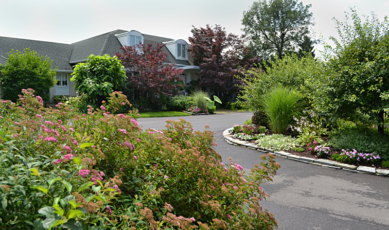Amherst backyard with lavish gardens was setting for for Grassless garden designs