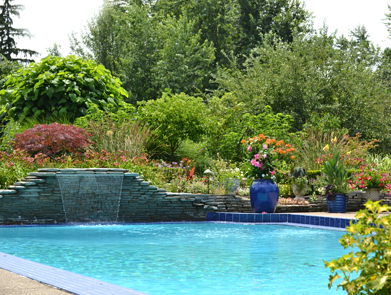 gardens around inground pool with waterfall in Amherst NY