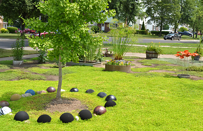 lawn of sedum with bowling balls in Tonawanda NY