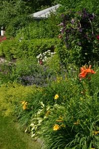 view in backyard in West Seneca NY