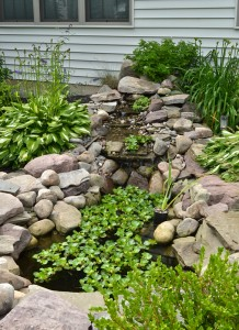 waterfall and pond in Grand Island NY