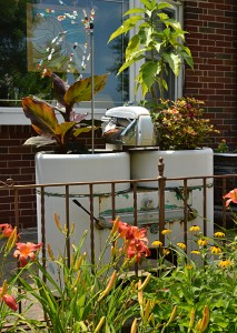 wringer washer used holds plants in Tonawanda NY garden
